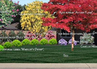 Front Yard Renovation - Photo Design