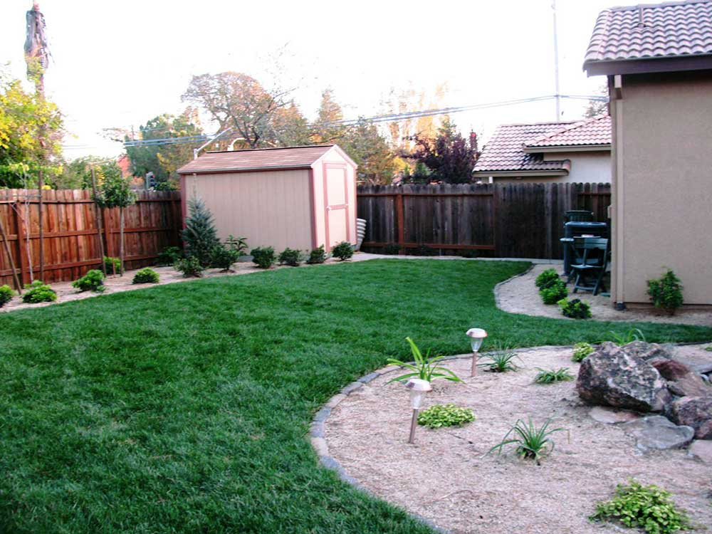 Backyard Renovation Sacramento After 8