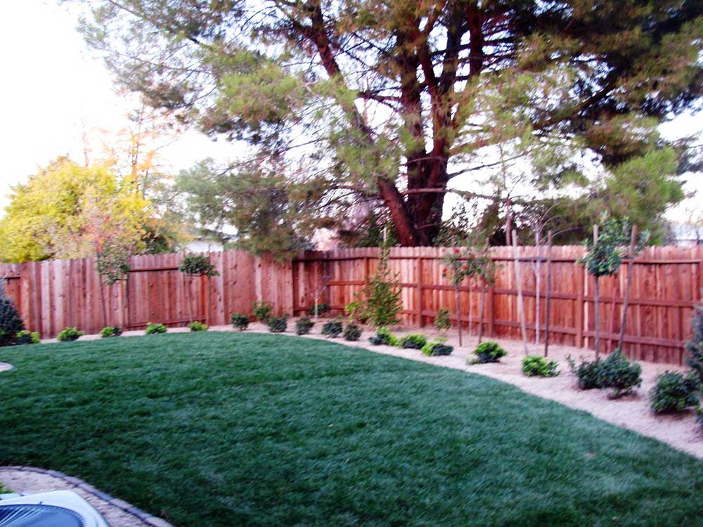 Ordinaire Backyard Renovation Sacramento After 9